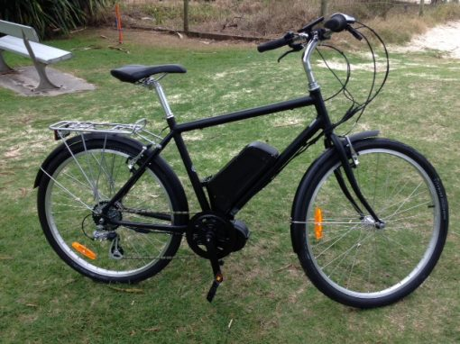 Custom Build 250W Electric Bike $2,450
