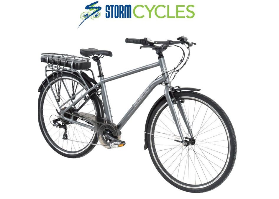 Electric Bike Rear Hub Drive $1,699